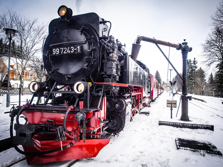Harz single reisen